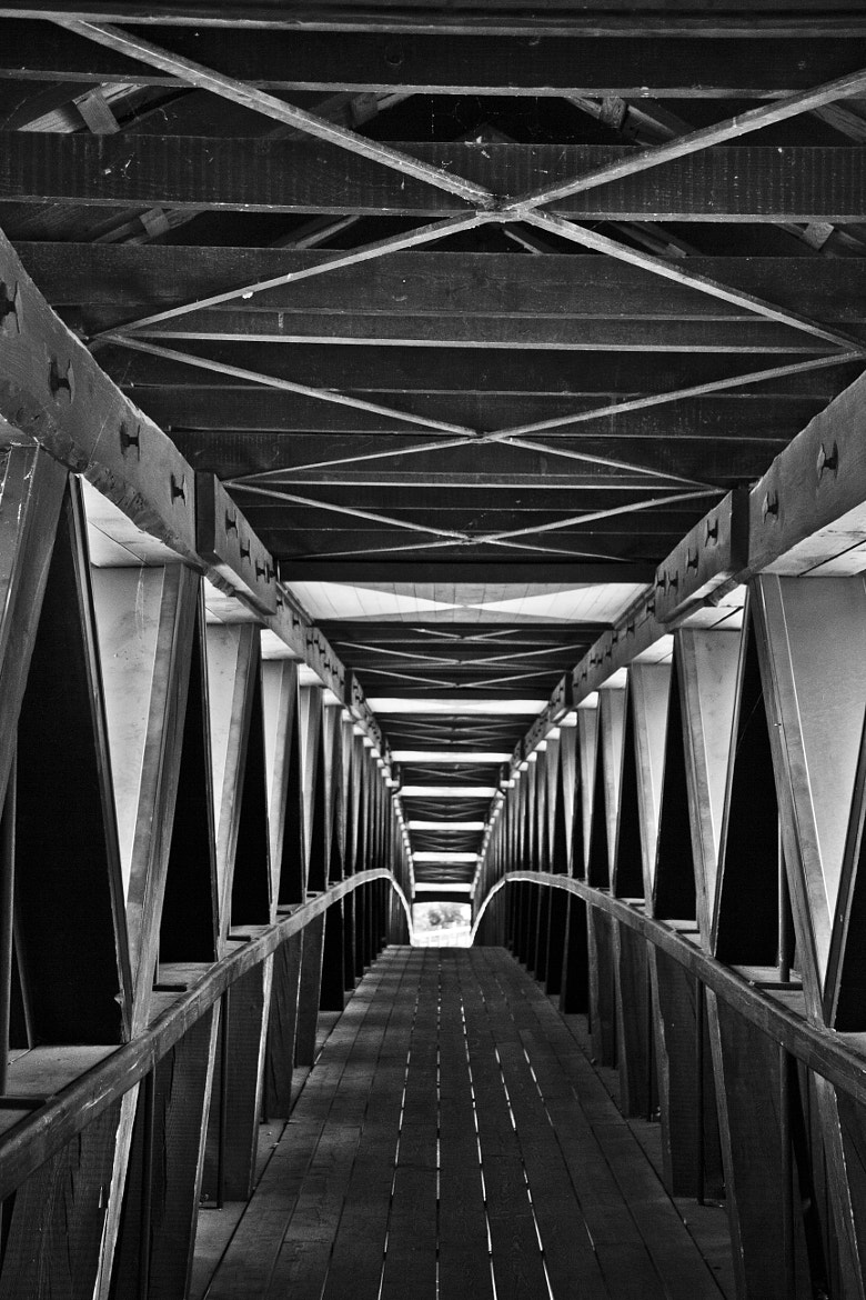 Photograph Bridge  by theonlyheinrich on 500px