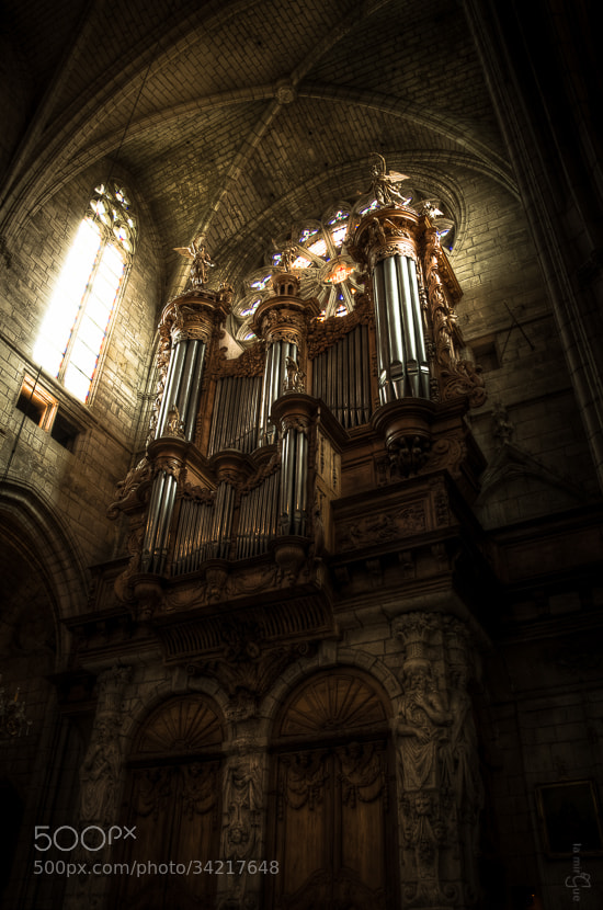 Photograph Orgue by Lamirgue Guillaume on 500px
