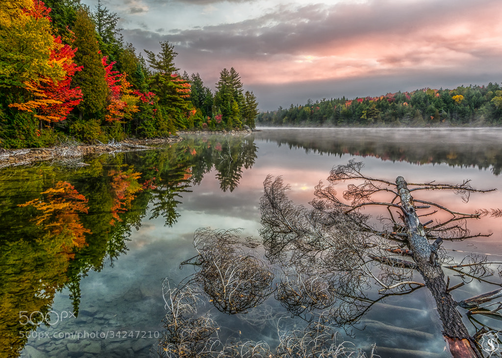 Photograph Tranquility by Prism Photography on 500px