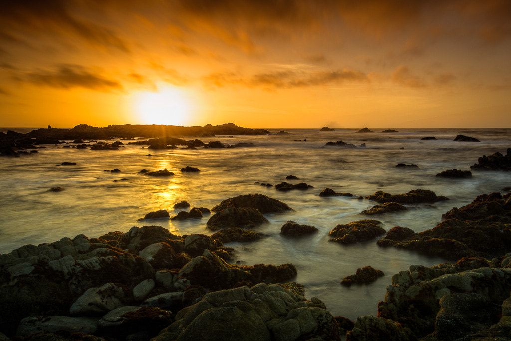 Photograph Sunset at Pacific Grove by Chad Griggs on 500px
