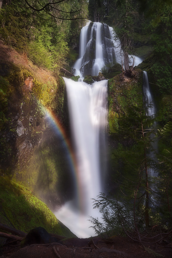 Photograph Everyday, Magic by Tula Top on 500px