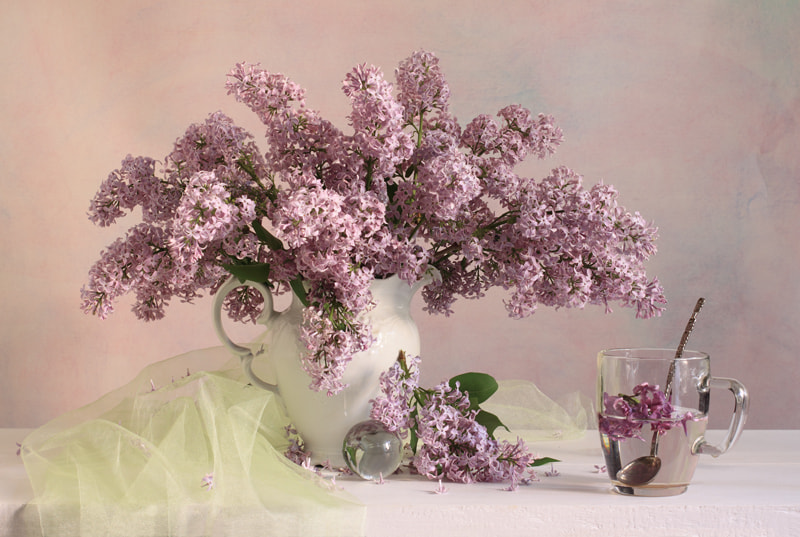 Photograph Les Lilas by Natalie Panga on 500px
