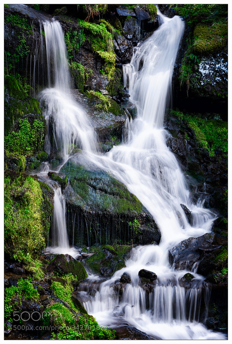 Photograph ♪ Waterfall ♪ by gael photo.com on 500px