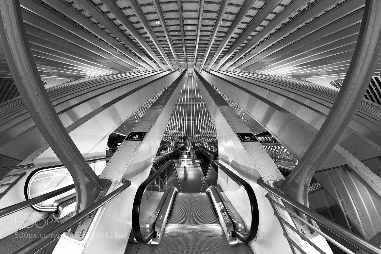 Photograph Calatravanism LXIX - b/w version by Arnd Gottschalk on 500px