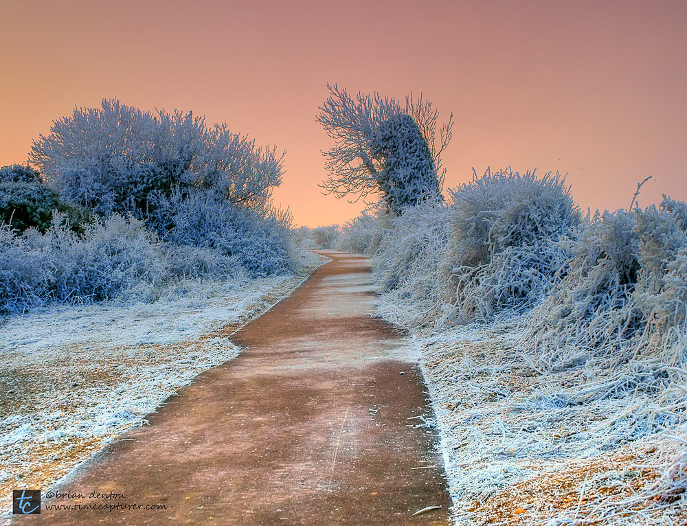Photograph a winter's path by Brian Denton on 500px