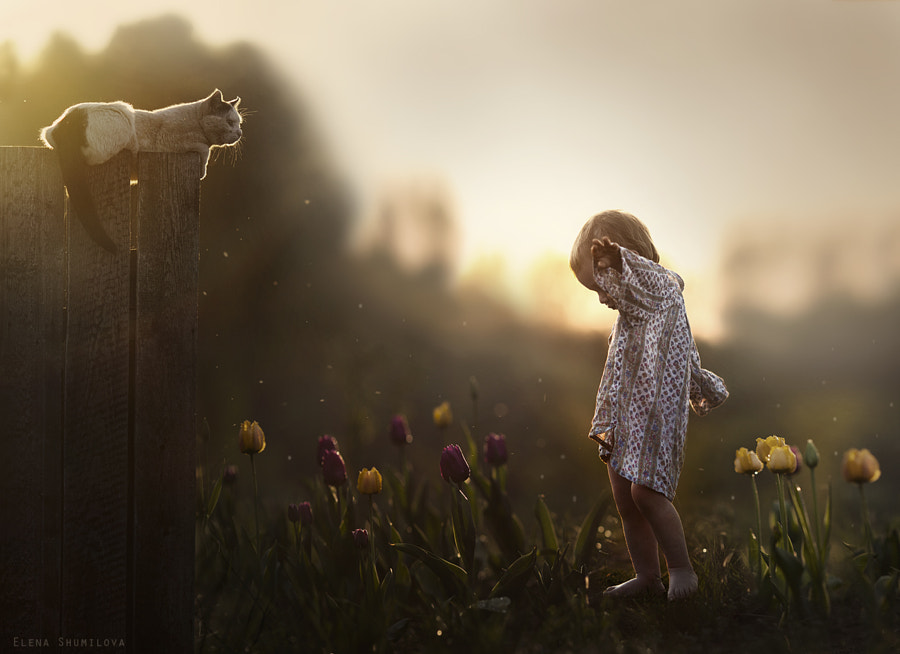 Photograph Summertime by Elena Shumilova on 500px