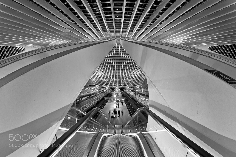 Photograph Calatravanism LXXIV - b/w version by Arnd Gottschalk on 500px