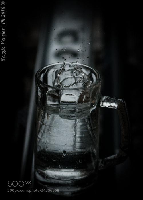 Photograph et pluat, carpe diem... by Sergio Verzier Photography on 500px