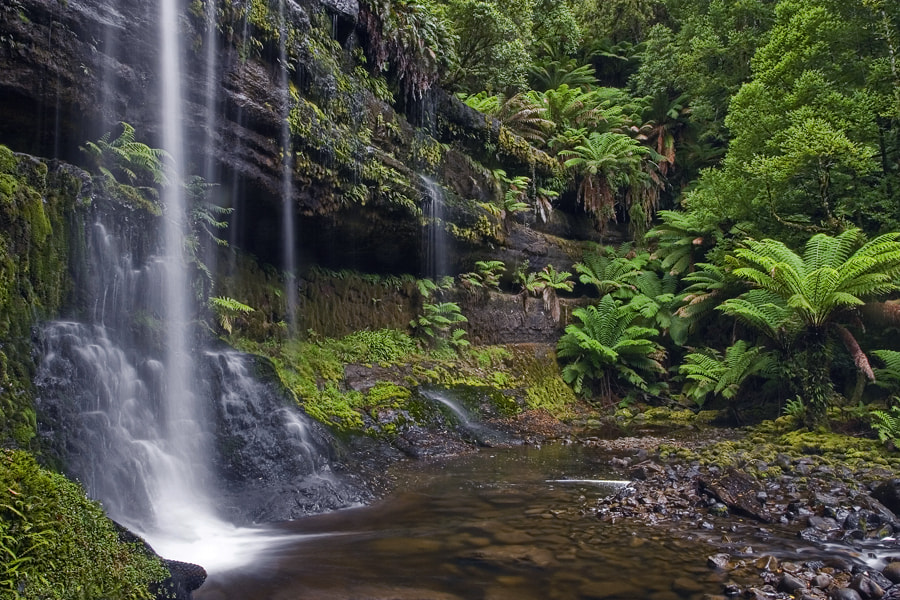Photograph Russell Falls by Peter Daalder on 500px