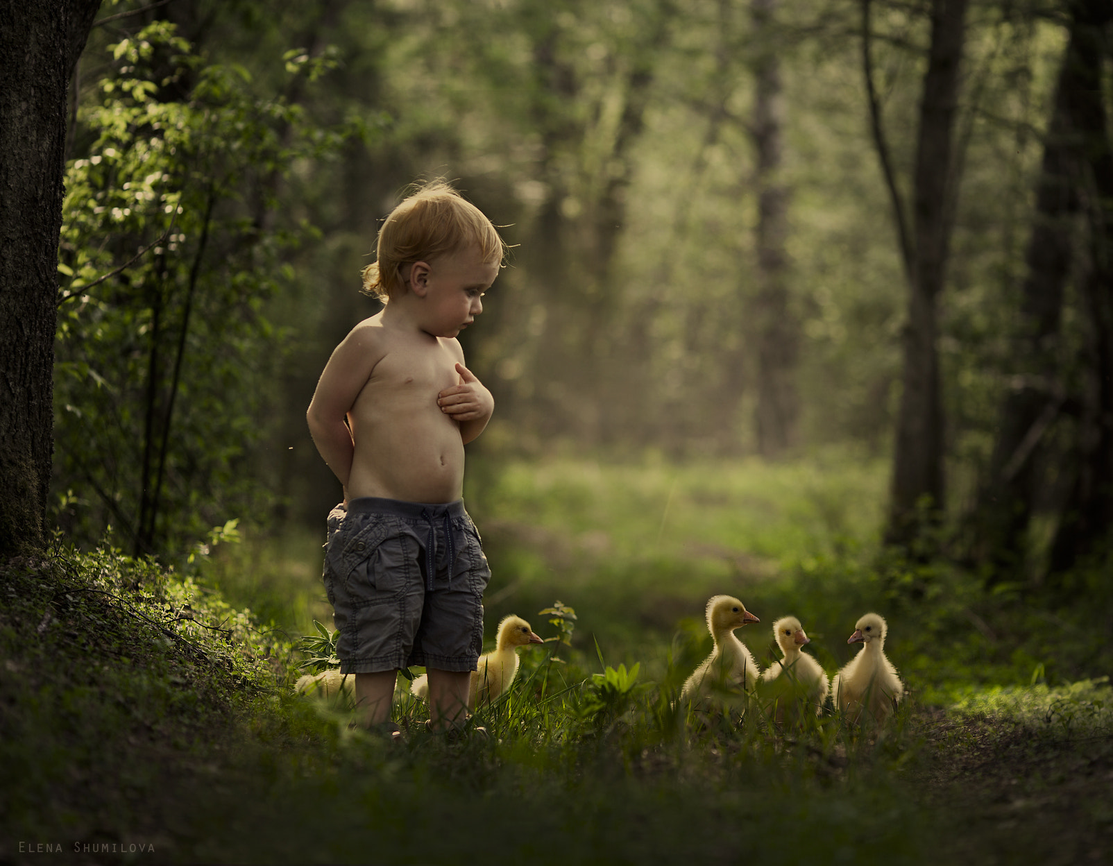Photograph Kindergarten by Elena Shumilova on 500px