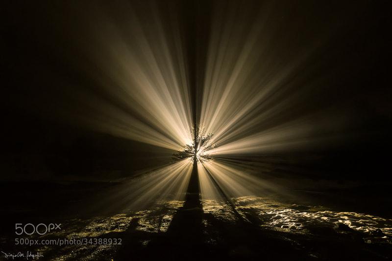 Photograph Luz Celestial by Diego Garin Martin on 500px