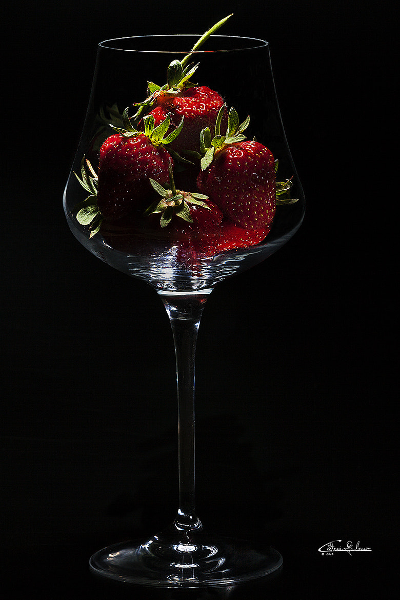 Photograph Still Life by Giuliano Cattani on 500px