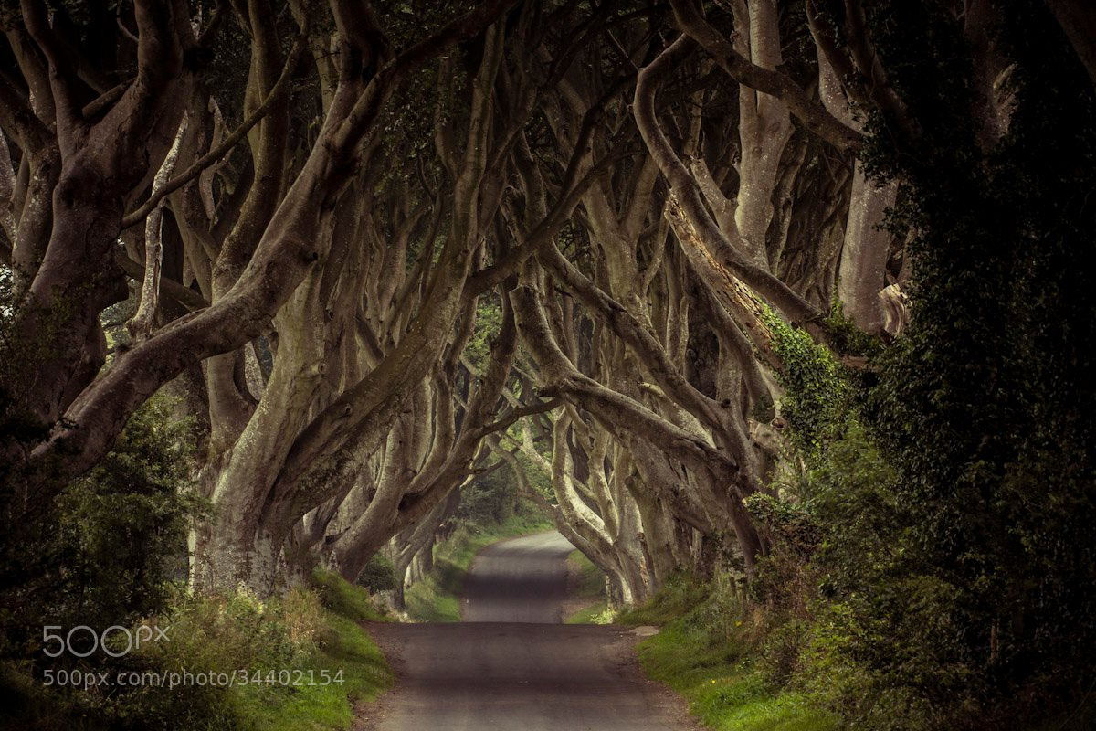 Photograph Nature's Archway by OUTEX Photo on 500px