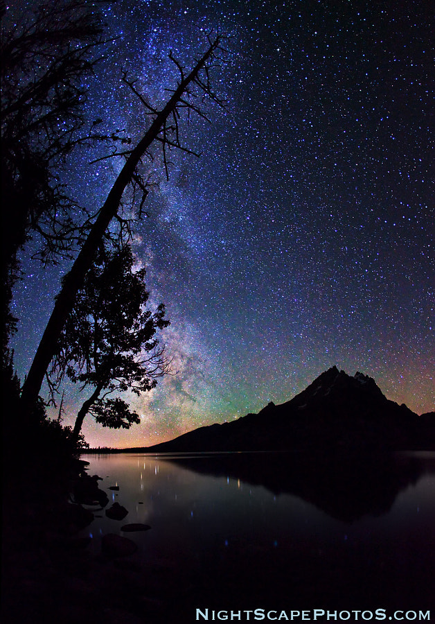 """Trees silhouetted against the Milky Way stars, as they shine over Jenny Lake and the reflecting Grand Teton peak, Grand Teton National Park. The reddish-orange glow on the left is light pollution from the town of Jackson (about 20 miles away). The lesser glow to the right is from the small town of Driggs (15 miles), Idaho; and the city of Idaho Falls (75 miles), Idaho.  Virtually all my NightScapes are ONE exposure (less than 30 seconds), and with very little Photoshop correction. For more how-to and behind the scenes information, visit my <a href=""""http://intothenightphoto.blogspot.com/"""">Into The Night Photography</a> blog. For Milky Way photography workshops, visit my <a href=""""http://intothenightphoto.blogspot.com/2013/11/royce-bairs-2014-photography-workshop.html"""">NightScape Events</a> page. You can <a href=""""http://roycebair.smugmug.com/Personal-Work/Nightscapes/"""">order PRINTS here</a>."""