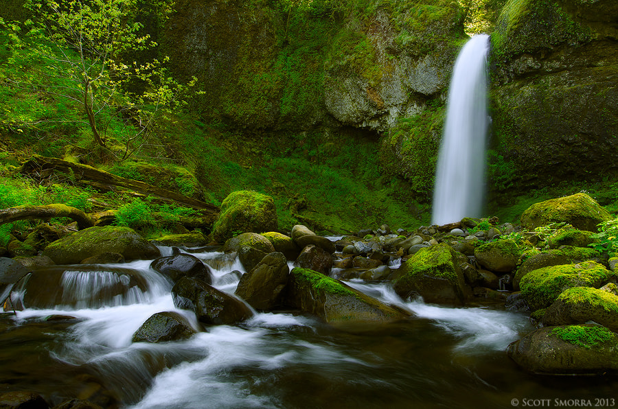 Photograph Springtime in the Gorge by Scott  Smorra on 500px
