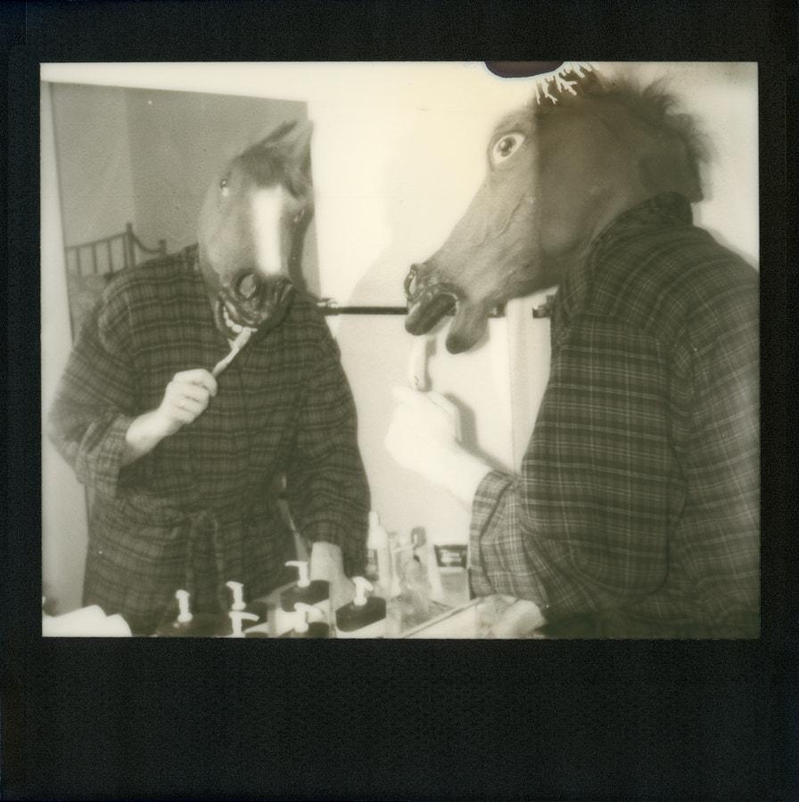 Horse Grooming I