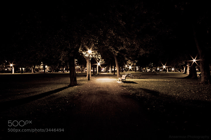 Photograph A Night In The Park by Frederic Ansermoz on 500px