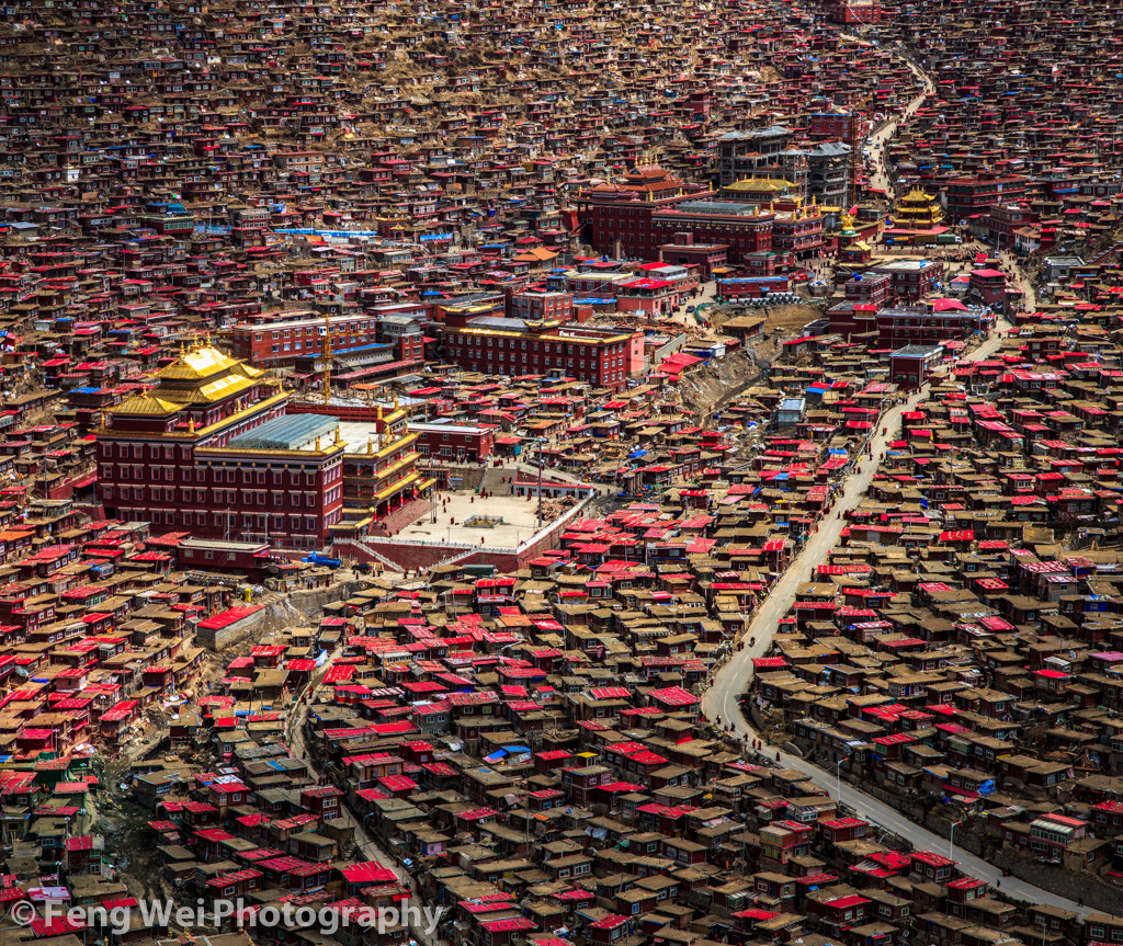 Photograph The Valley of Buddha by Feng Wei on 500px