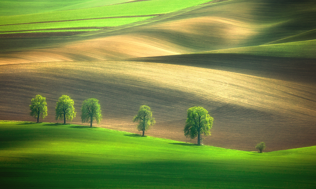 Photograph Shadows on the fields.... by Krzysztof Browko on 500px