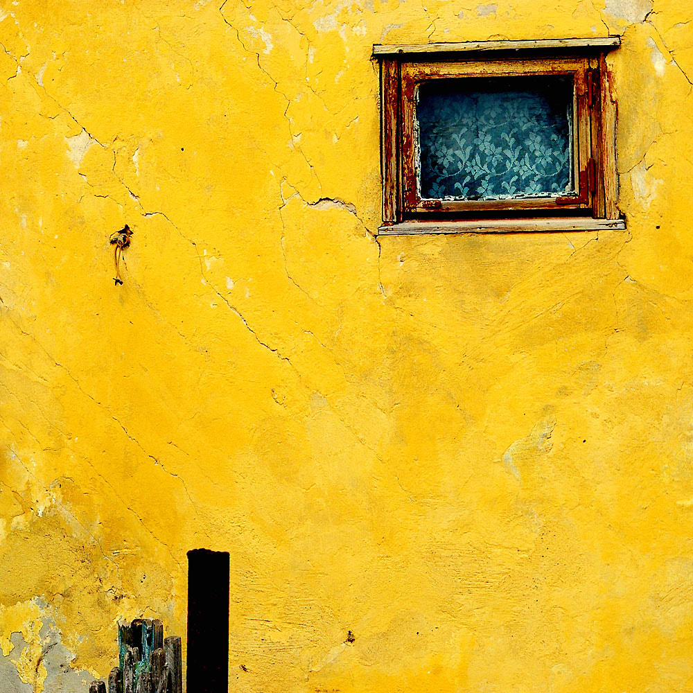 Photograph yellow by  incolorwetrust on 500px