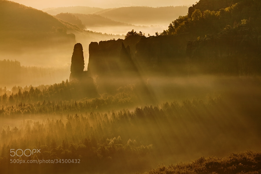 Photograph Gold Saxon Switzerland by Daniel Řeřicha on 500px