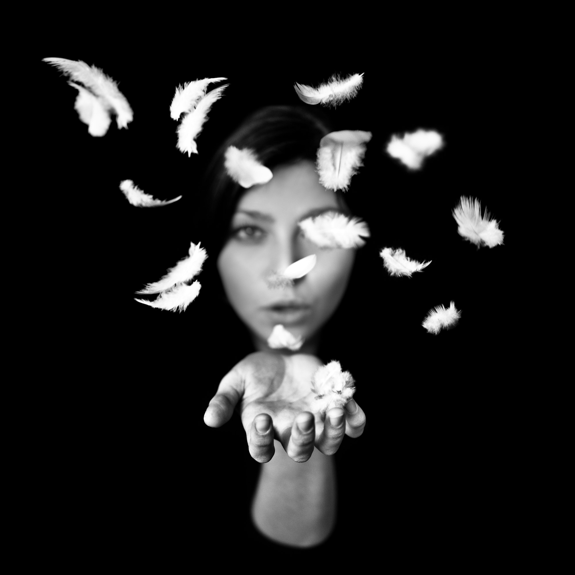 Photograph Plumes by Benoit COURTI on 500px