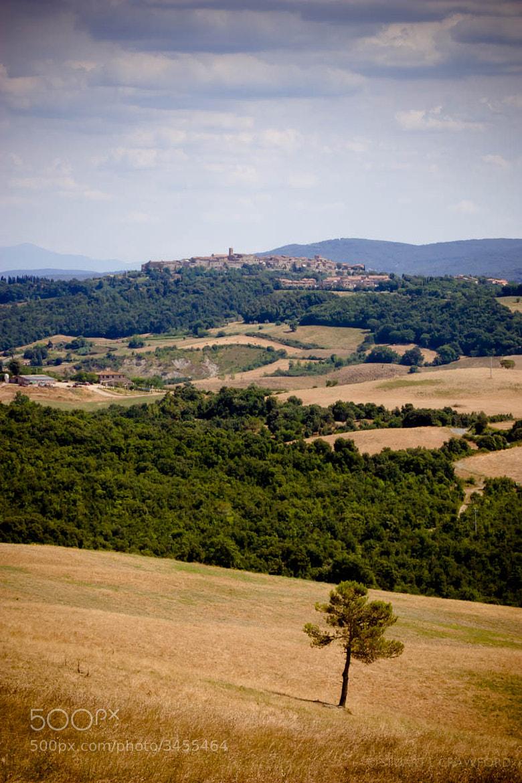 Photograph Casole d'elsa View by Stuart Crawford on 500px