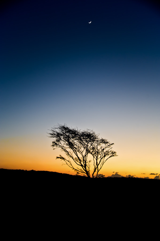 Photograph sunset  by Ahmed Alhammad on 500px
