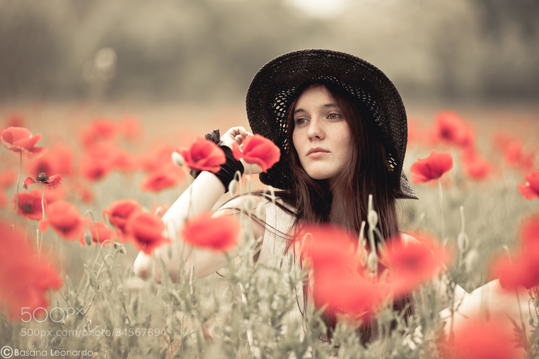 Photograph  In the poppy field II by Leonardo Basana on 500px