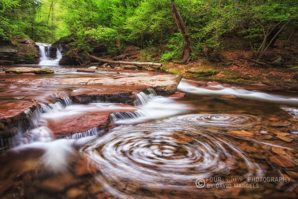 Photograph Twin Whirlpools by David  Mangels on 500px