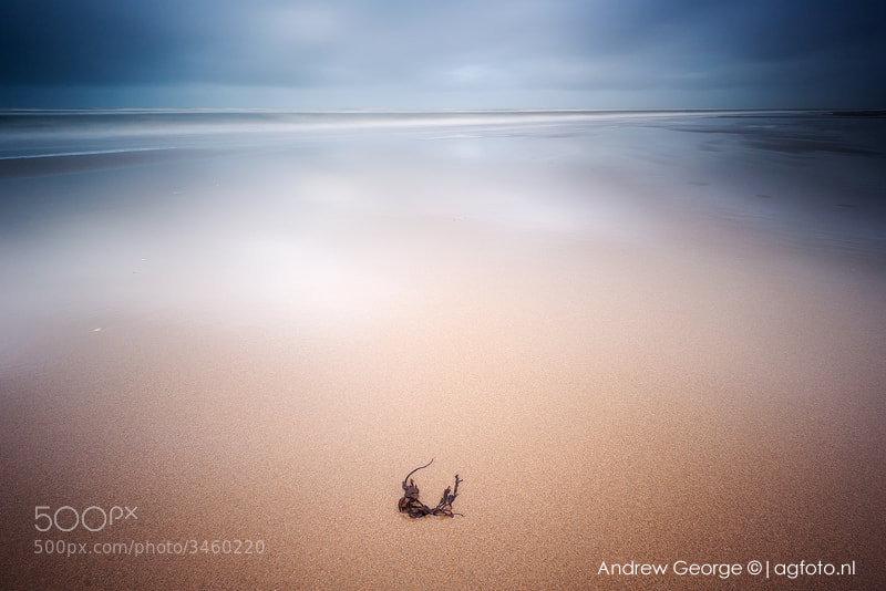 Photograph Zen by Andrew George on 500px