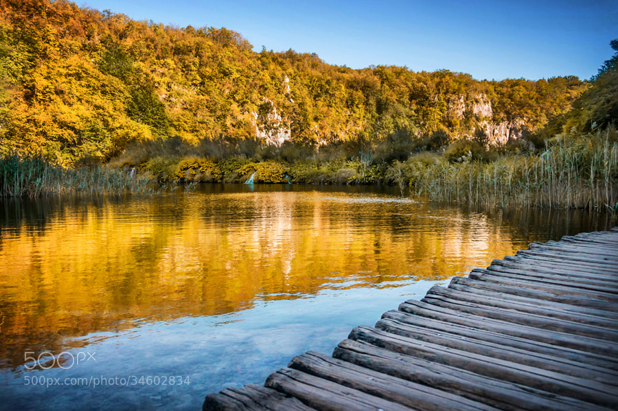 Photograph Path on the lake by Laszlo Gal on 500px