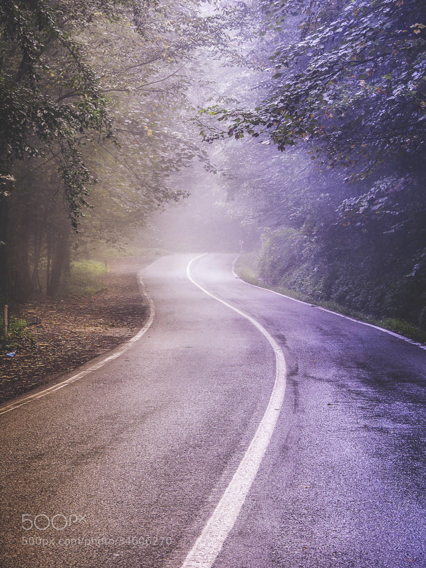 Photograph Misty road by zamyad golpayegan on 500px