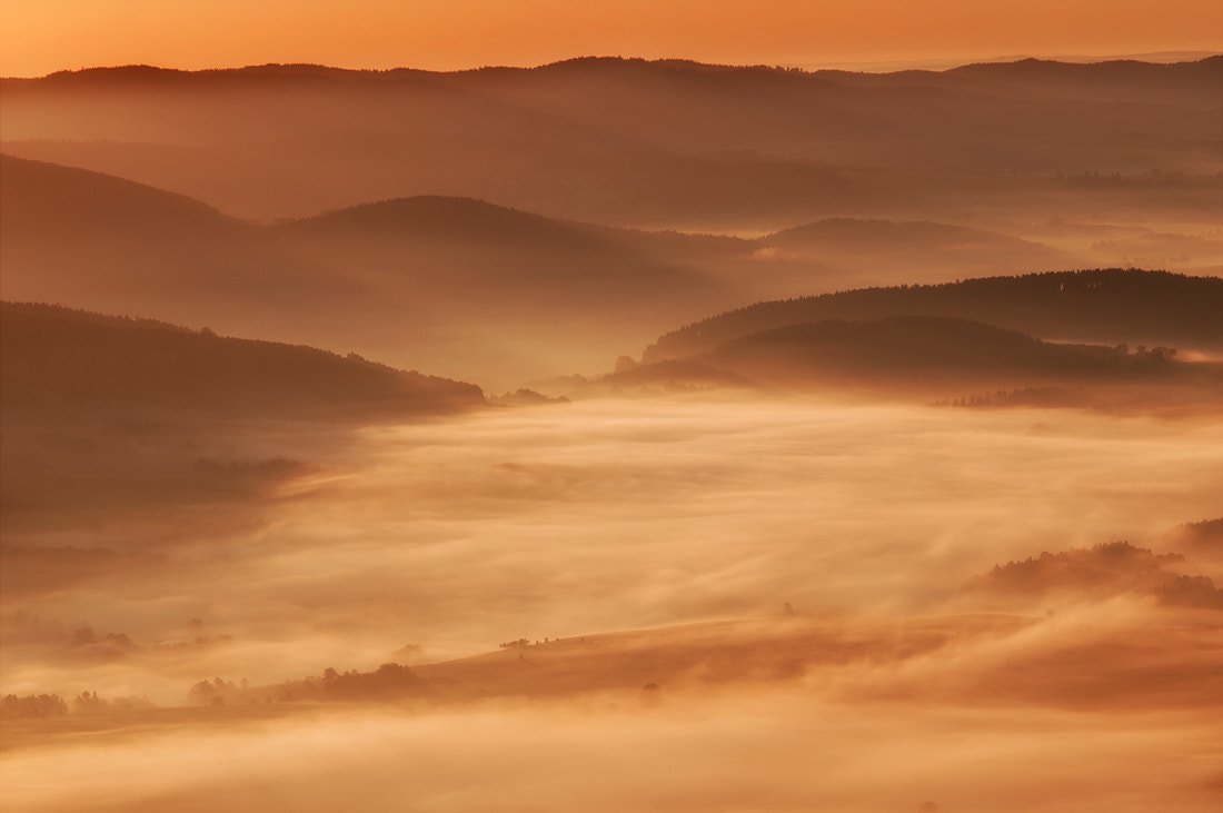 Photograph honey sunrise by Lukasz Lewandowski on 500px