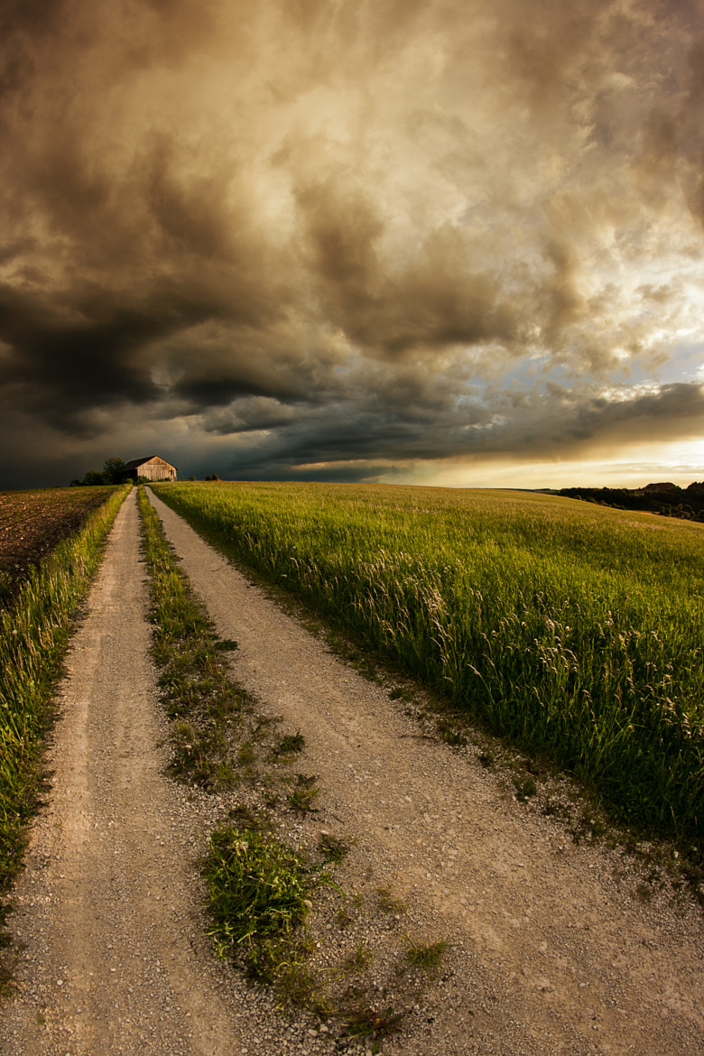 Photograph Country Road by NICOLAI BÖNIG on 500px