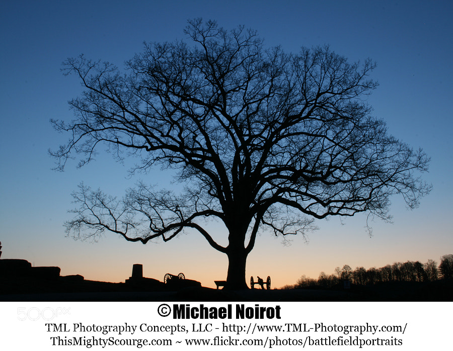"""This Gettysburg """"witness tree"""" is located on Hauk's Ridge above the Devil's Den - Gettysburg National Military Park.  Camera: Canon EOS 7D Lens: Canon EF 17-40mm f4L USM Zoom: 22mm Shutter: 10 seconds Aperture: f/13 ISO: 400"""