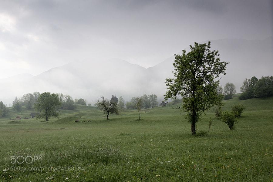 Photograph Slovenian countryside by Alexei Mikhailov on 500px