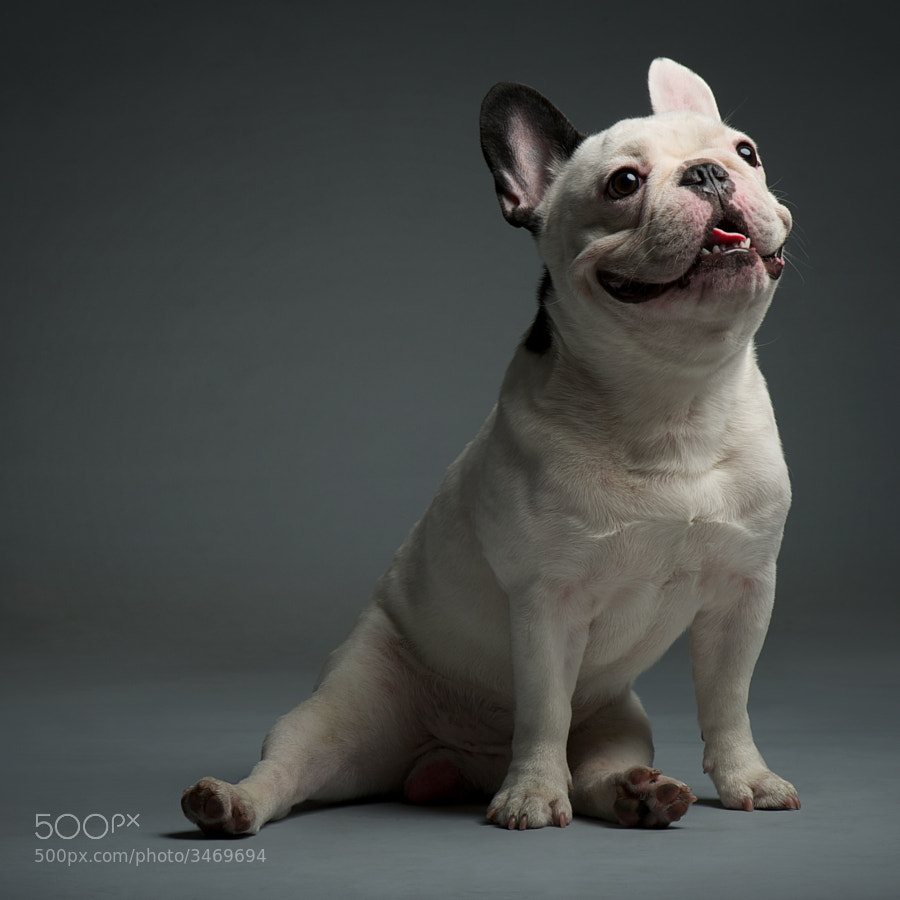 Photograph Nimbus by Lecollie Portraits on 500px