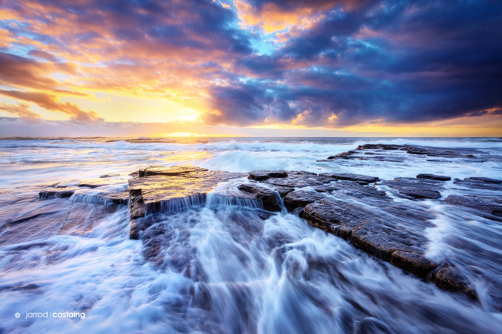 Photograph Genesis by Jarrod Castaing on 500px
