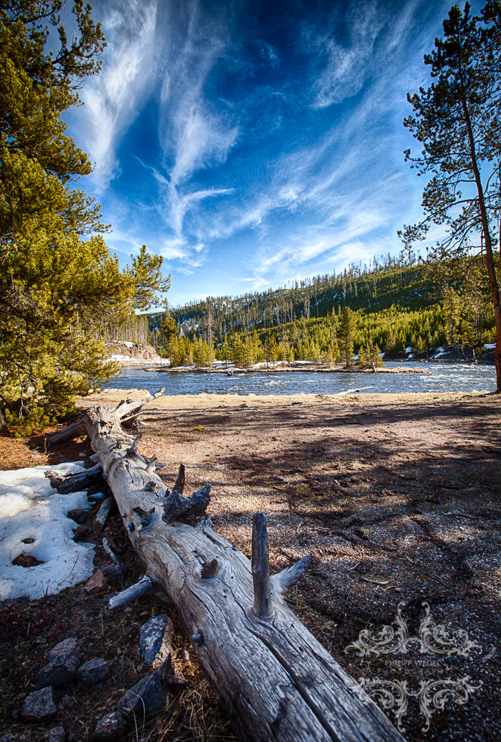Photograph View in Yellowstone by Philipp Wedel on 500px