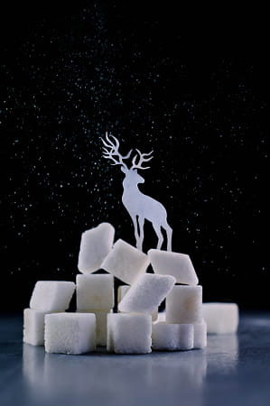 Reindeer (Powdered sugar) by The Stillery x Natta Summerky on 500px