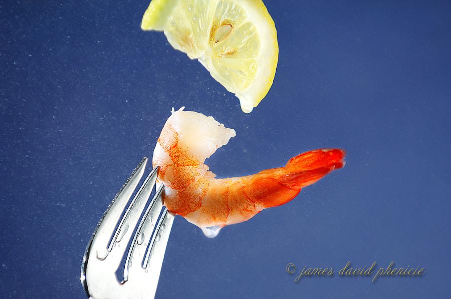 Food Series:  Shrimp