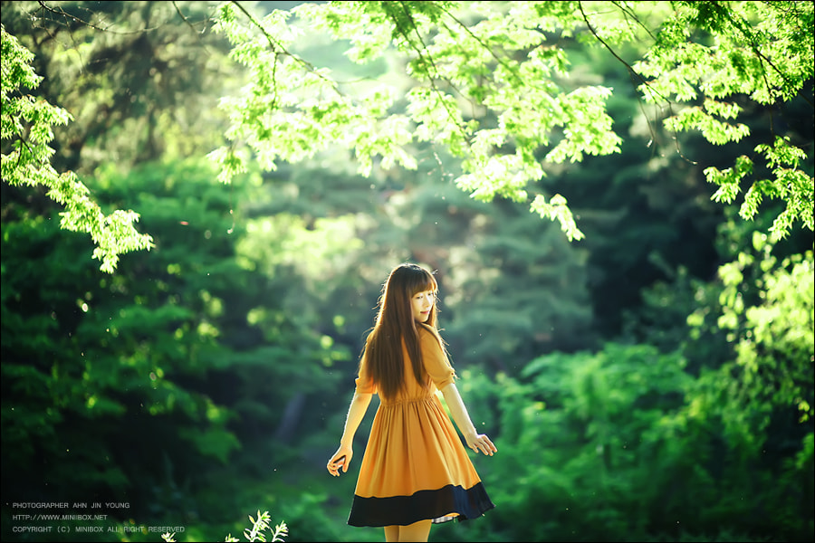 Photograph Green Day by Jinyoung Ahn on 500px