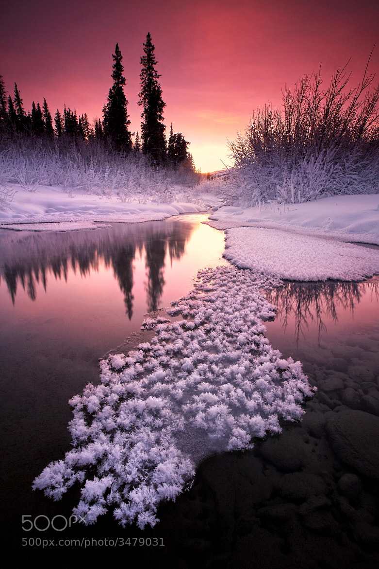 Photograph Winters Tones by Ron Perkins on 500px