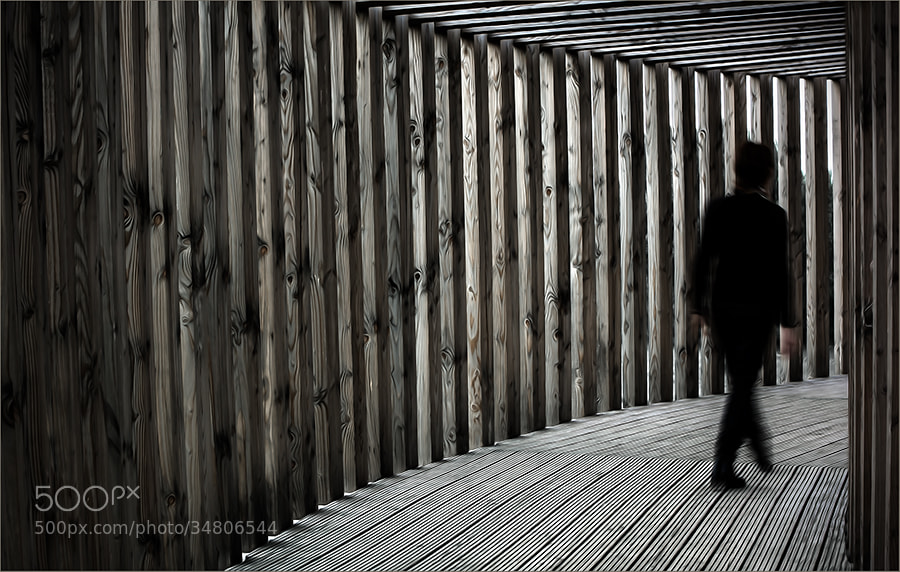 Photograph Walk the way ... by Gilbert Claes on 500px