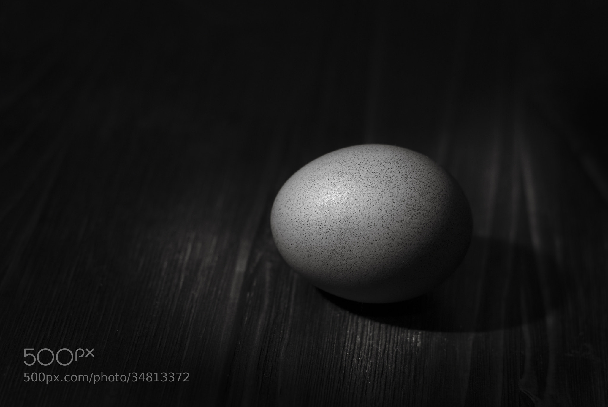 Photograph Egg by Mark Hammer on 500px