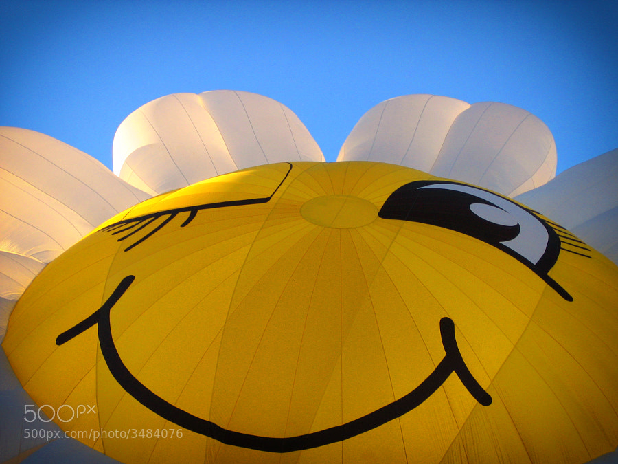 Photograph Flower Balloon by apeape on 500px
