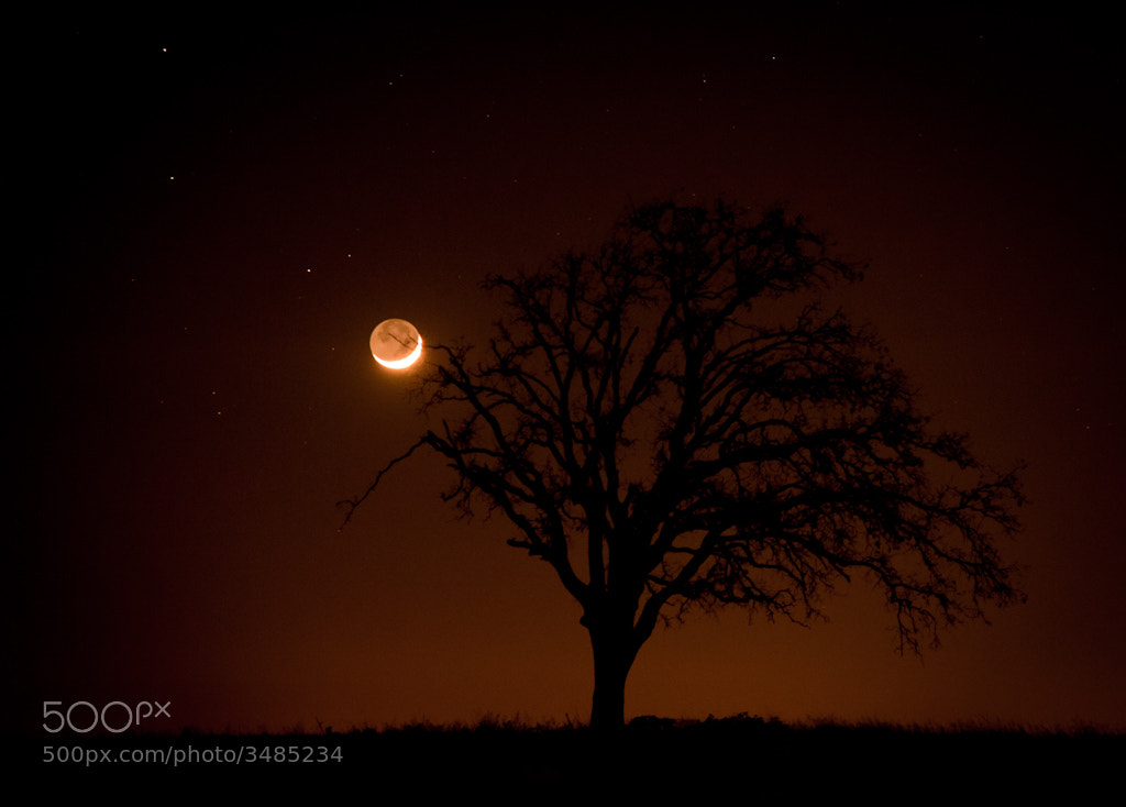 Photograph Lone Star Moon by Argo Shots on 500px