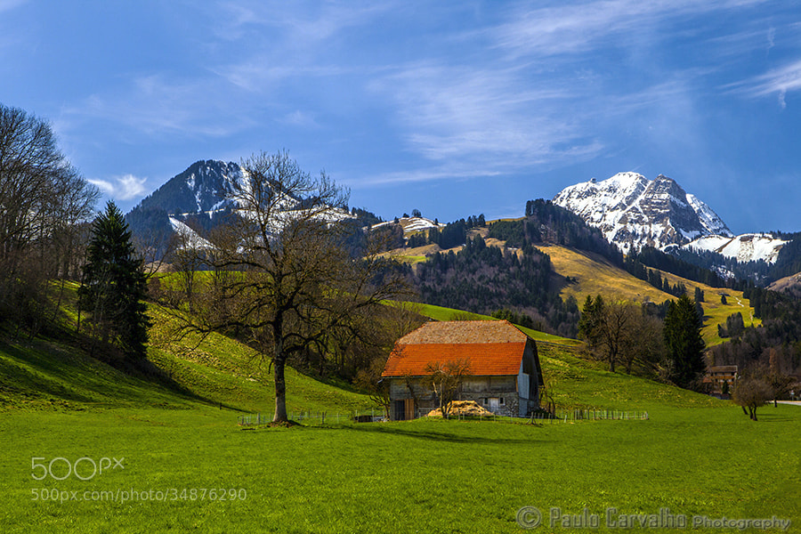 Photograph Switzerland by Paulo Carvalho on 500px