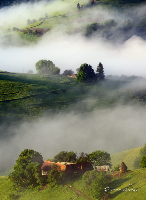 Photograph Picefull Morning by Ioan Chiriac on 500px